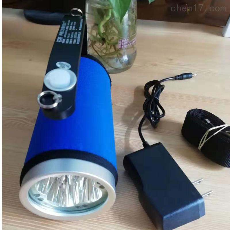 EB8020B外壳不怕磨损的防爆手提应急照明灯