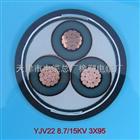 产品展示 yjlv22铠装铝芯电缆YJLV22价格