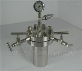 CF系列实验室简易高压反应釜