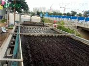 河道淤泥固化设备