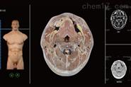 断层解剖与断层影像虚拟教学系统