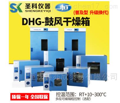 小型 电热恒温鼓风/实验室干燥箱