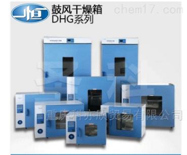 电热鼓风干燥箱/烘箱/实验室箱体/箱子