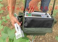 植物光合作用测定仪型号:MC12/ZX-1020