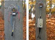 EMS81便携式树木茎流观测仪