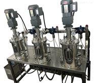 实验室厌氧发酵产沼气设备 厂家直销