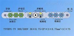 TVVBPG-TV新型钢芯和视频线电梯电缆