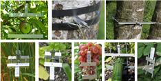 植物生长测量仪