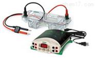 水平电泳仪(槽)MINI-SUb cell GT 现货特价