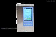 便携式负氧离子检测仪