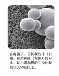 Vivapure®离子交换型(IEX)离心纯化柱