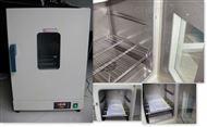 电热恒温干燥箱DHG-9005