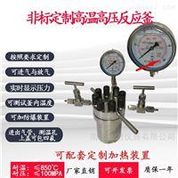 EPS高温高压不锈钢反应釜
