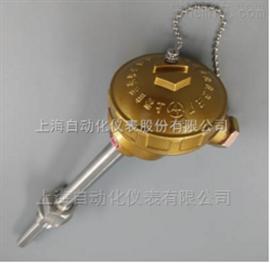 SBWR-2280/131SBWR-2280/131一体化装配式热电偶