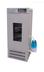 RGX-250RGX-250人工气候培养箱   恒温恒湿箱