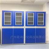 安阳市铝木仪器柜药品柜厂家供应