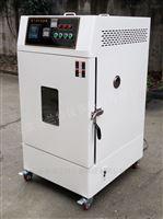 RLH-100換氣老化試驗設備