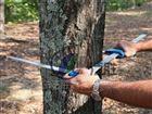 Mantax blue 蓝色测径仪