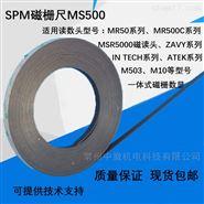 MS500磁栅尺
