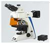 LB-282 LED荧光双目医学诊断显微镜