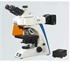 LB-283 LED荧光三目诊断显微镜