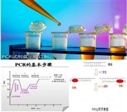 志賀氏菌屬通用PCR檢測試劑盒廠家