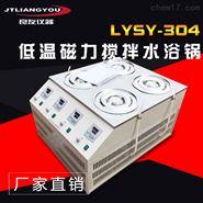 金坛良友 LYSY-304低温磁力搅拌水浴锅
