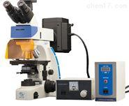 UY203i荧光显微镜