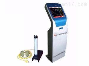 电脑碳硅分析仪