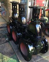 Z941T-10铸铁电动闸阀