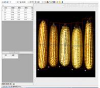 玉米考种分析系统扫描版SYKZ-A