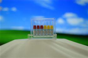 CYP/EZ043CYP4A11 + 还原酶 + B