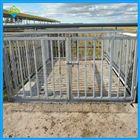 牲畜用的围栏秤,3t畜牧电子秤尺寸