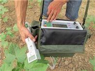 智能型植物光合作用测定仪SYYL-1020