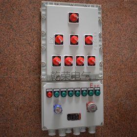 粉碎设备防爆照明配电箱