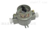 SW-10/220V鋁合金外殼壁掛式防爆防爆照明燈