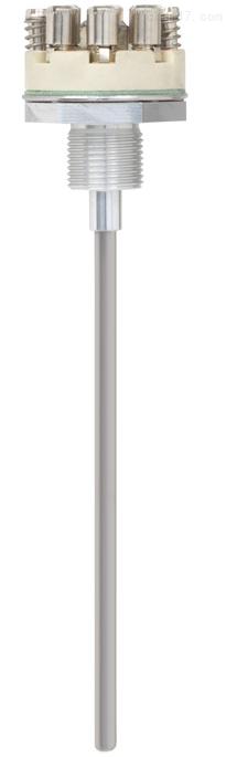 德国威卡WIKA测量探杆