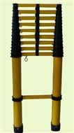 低价销售鱼杆式伸缩梯 JYT-Y