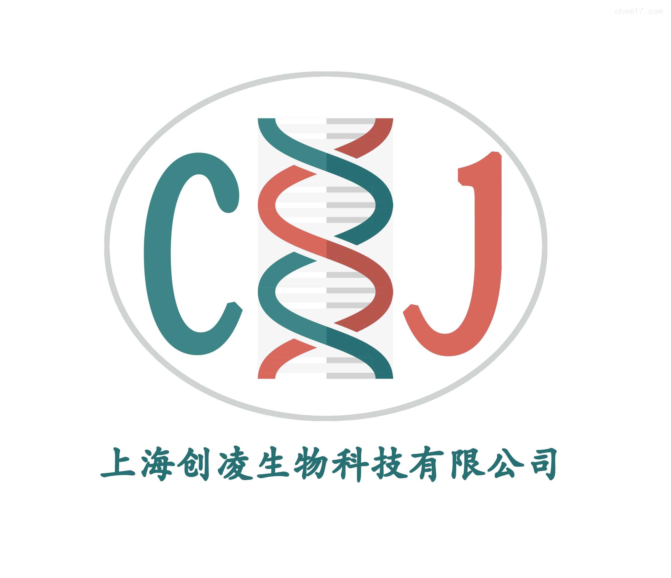 双荧光素酶报告基因检测技术服务分子生物学
