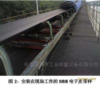 MTS-21江陰皮帶秤,輸送秤