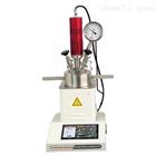 微型耐压反应釜