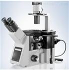 大型高清晰倒置显微镜