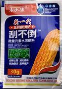玉米增产抗风刮不倒金大棒玉大棒