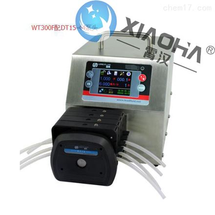 WT300F分配智能型蠕动泵DT泵头