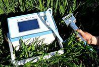 植物光合测量仪SYS-3080H