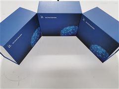 牛溶菌酶(LZM)ELISA kit