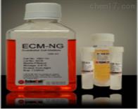 1001-NGScienCel内皮细胞培育基-无谷氨酰胺1001-NG