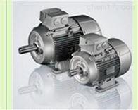 9AA132S02LAMMERS电机