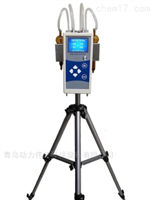 DL-6000B小流量空气采样器手持式双路采样仪