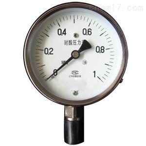 YTS -150 耐酸压力表
